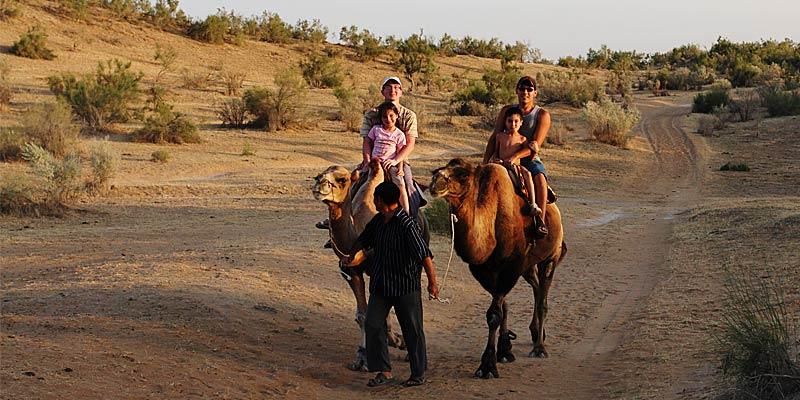 Катание на верблюдах в пустыне